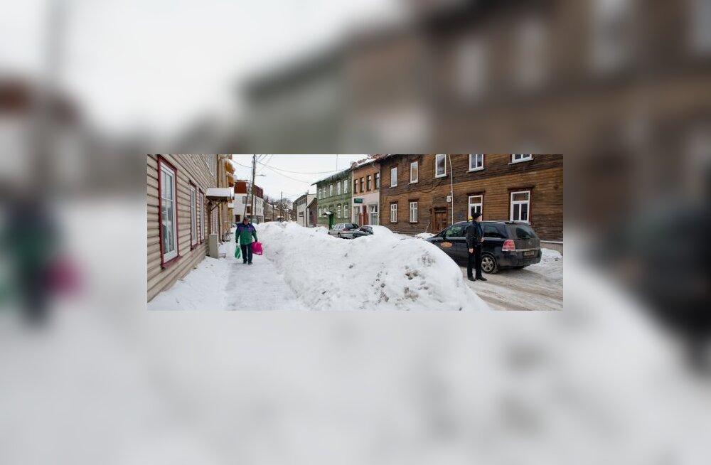 Õle tänav
