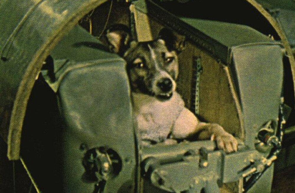 Sputnikud - kokku kuraditosin tehiskaaslast, mis katsetas kosmoselendu enne Gagarinit