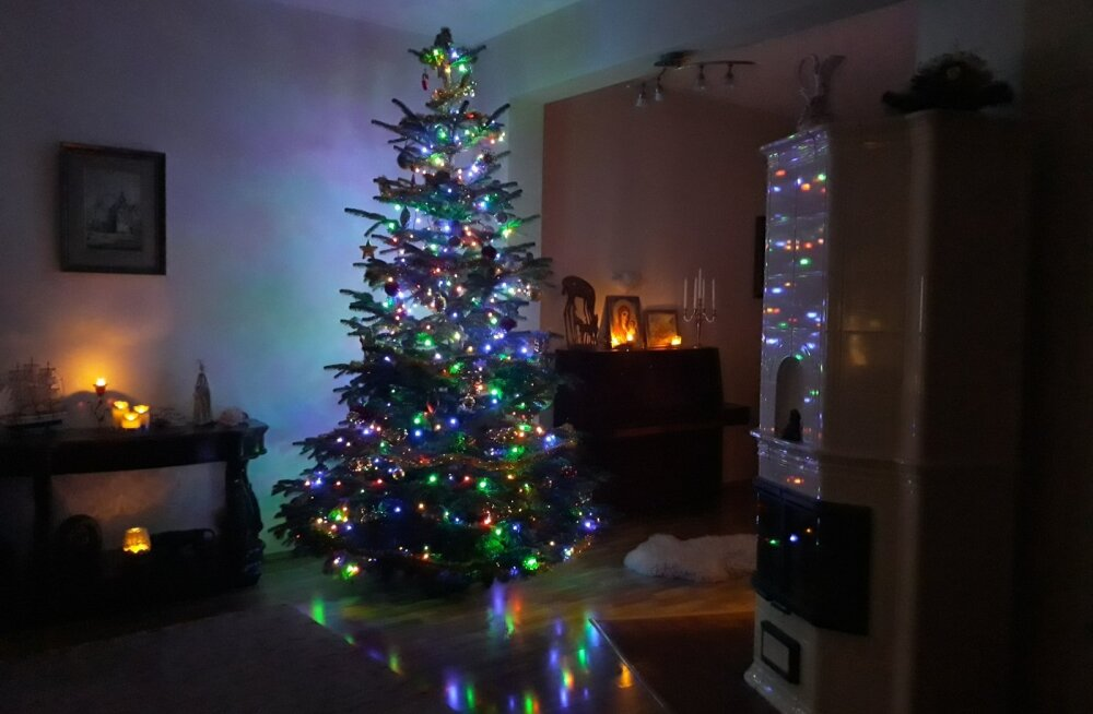 Lugeja jõulupuu