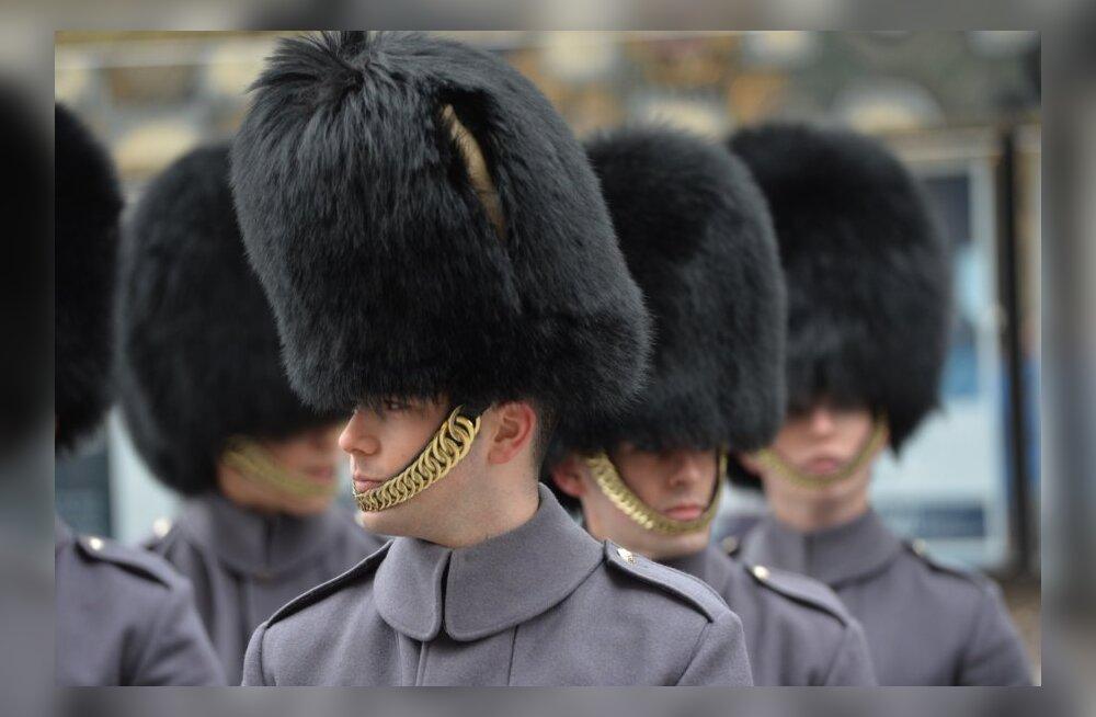 ВИДЕО и ФОТО DELFI: По площади Вабадузе прошли королевские гвардейцы в знаменитых медвежьих шапках