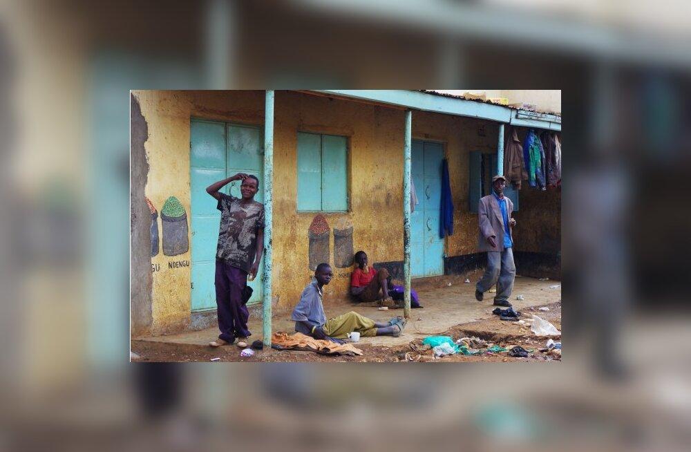 Liimilapsed - eestlanna reisikiri Keenia slummist