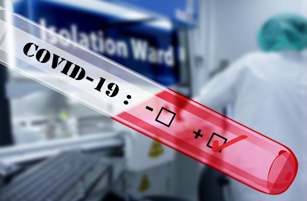 Большинство разносят коронавирус неосознанно: лишь у пятой части заболевших жителей Эстонии проявляются симптомы