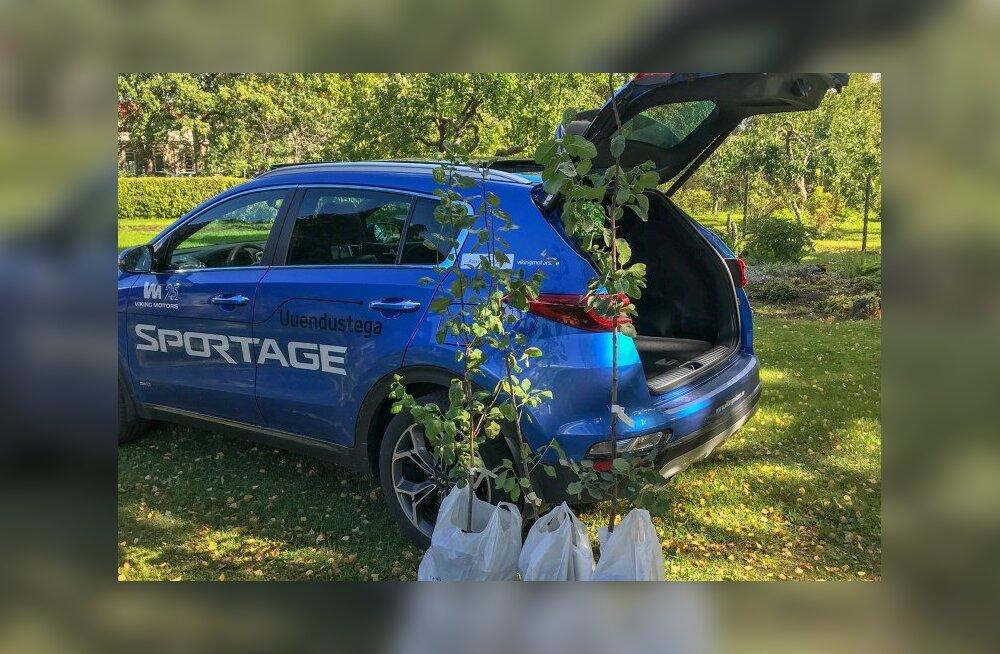Proovisõit: uuenenud Kia Sportage linnamaastur ja kolm ploomipuud