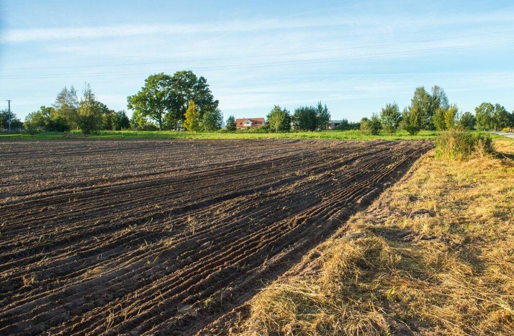 Ilma piiranguteta võib edaspidi ehitada rohkem kui poolele miljonile hektarile põllumajandusmaale