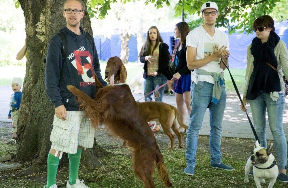 Loomasõprade rongkäik Käpakäik 2016