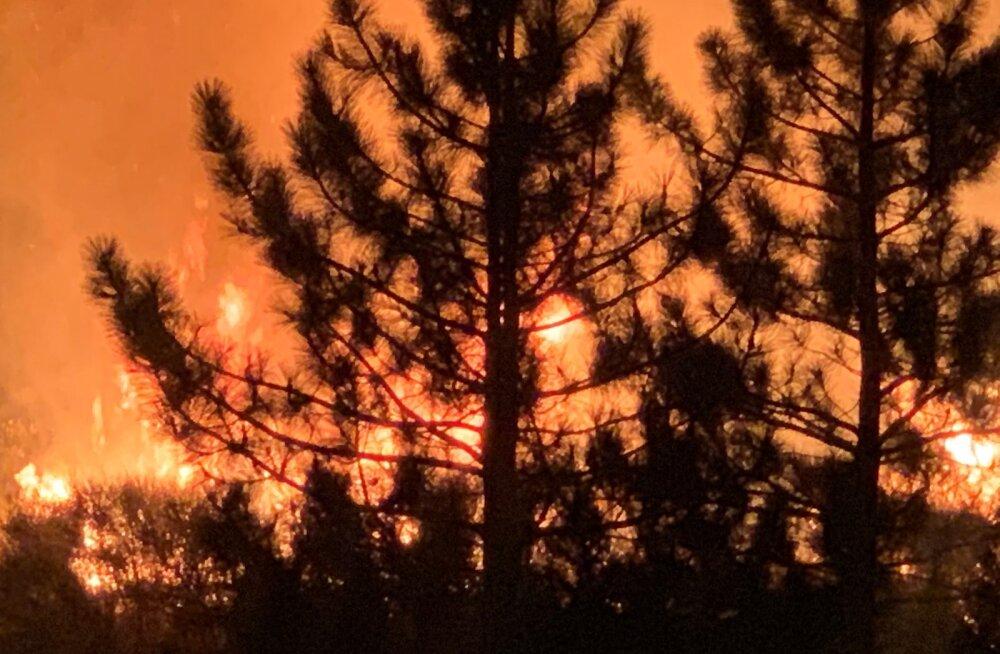 USA-WILDFIRES/CALIFORNIA-UGC