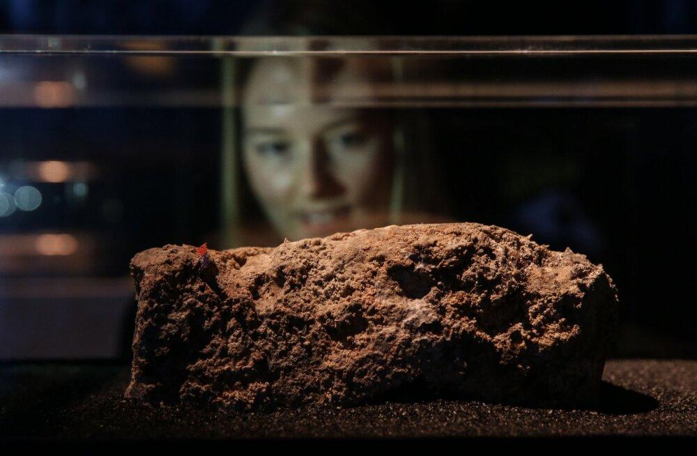 Ilge eksponaat: Londoni kanalisatsioonist kougitud hiiglaslik rasvakamakas jõudis muuseumi