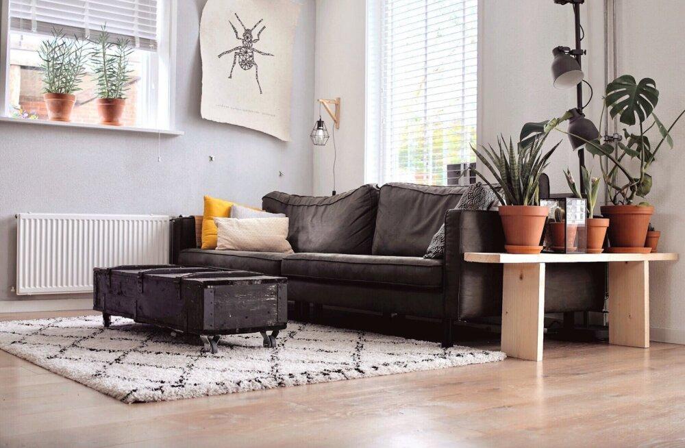 Neid asju märkavad külalised sinu elamises kõigepealt, mistõttu peaks kodu koristades just sellele tähelepanu pöörama