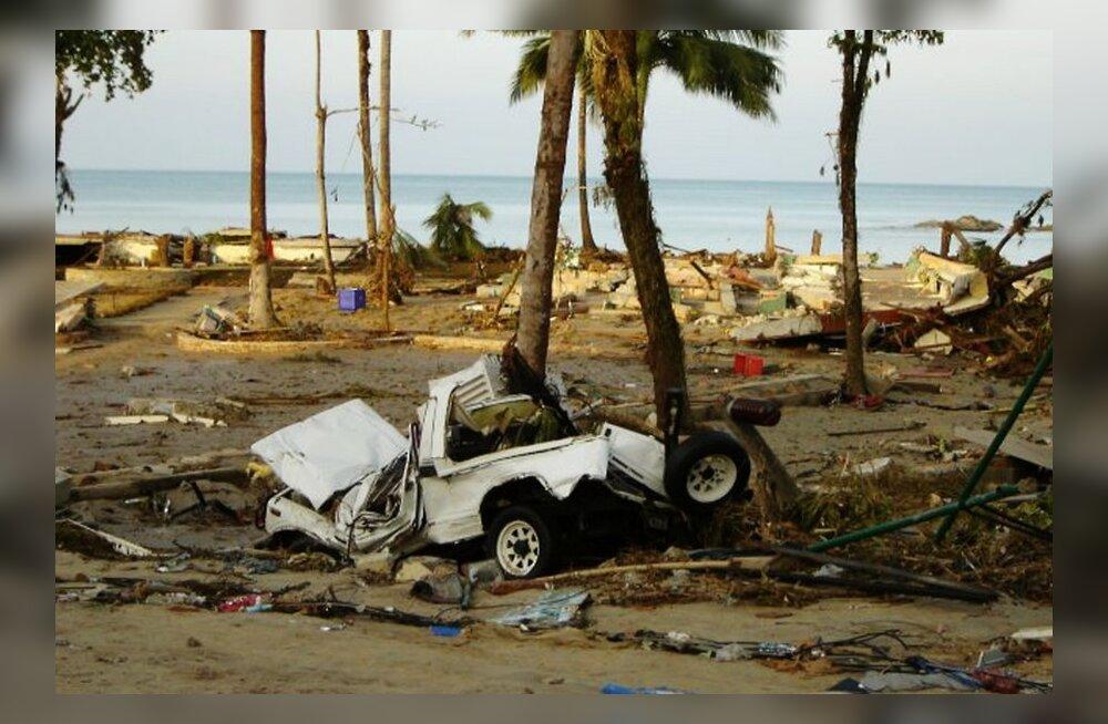 Minu Tai: meenutusi kohutavast tsunamist
