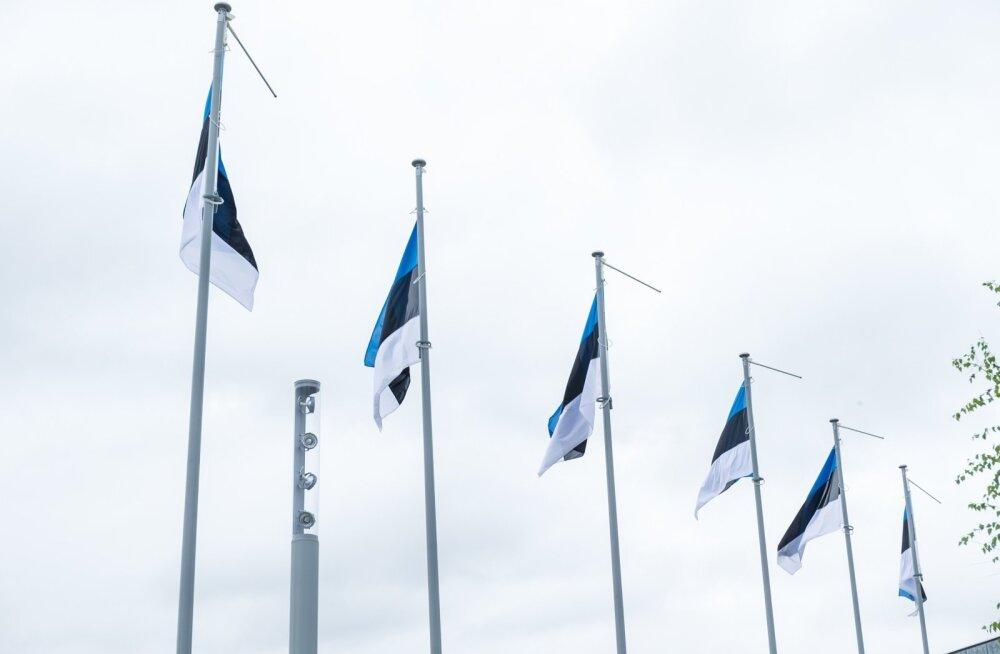 ГЛАВНОЕ ЗА ВЫХОДНЫЕ: Теракт в Лондоне, Дни флага, Старого Таллинна и Нарвы