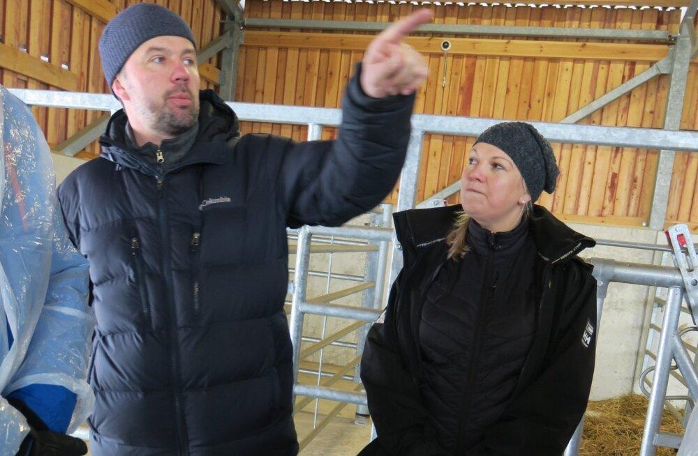 Parimad lihaveisekasvatajad Ivo ja Tiina Tomson.