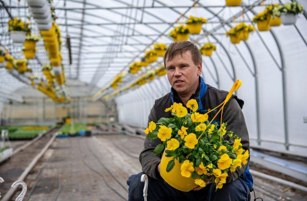Margus Vahtramäe valiti tänavu parimaks taimekasvatajaks.
