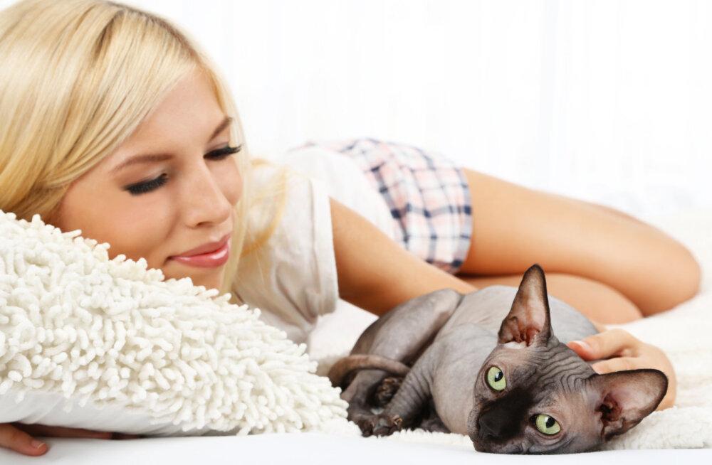 Mille järgi kass oma lemmikinimese välja valib?