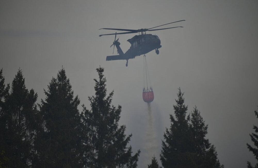 Rootsis evakueeritakse inimesi metsatulekahju eest