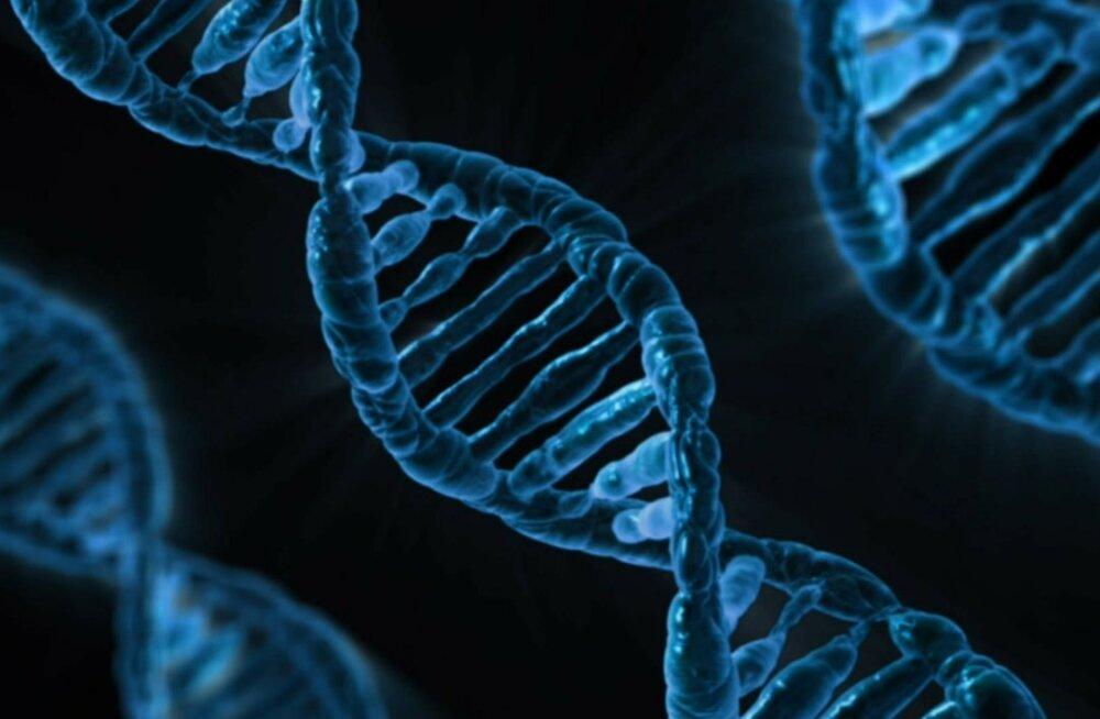 Arenguseire: geeniandmed on olemas iga viienda täisealise Eesti elaniku kohta