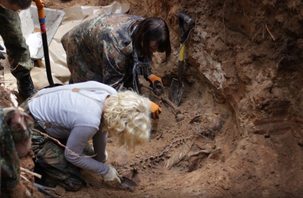 VIDEO ja FOTOD | Kuramaa metsast kaevati välja 66 nõukogude sõduri säilmed