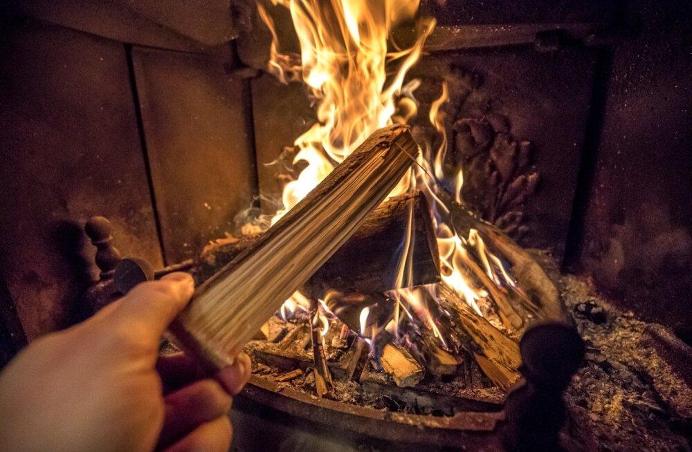 Konverents Puit Energiaks 2019 | Põletav teema - kas Narva elektrijaamad peaksid puidust elektrit tootma?