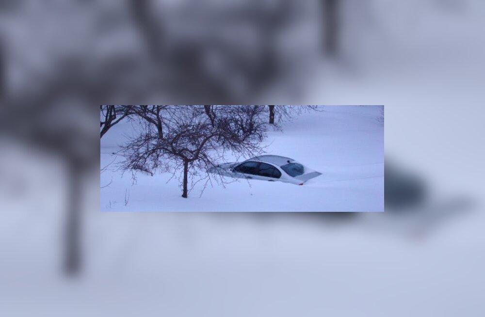 VIDEOD: lumi tapab Euroopas kümneid inimesi