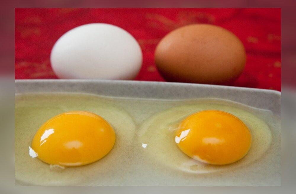 Kolm munamaski näole ja kehale