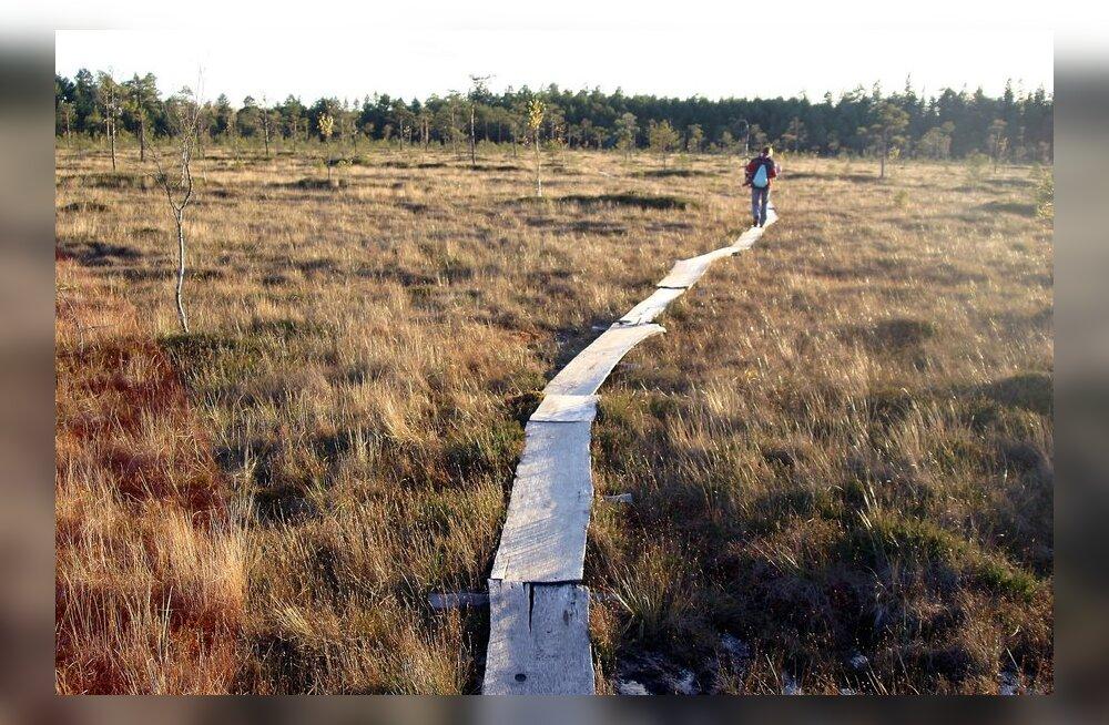 Ekspert soovitab: kuhu minna praegu Eestis sügismatkale?