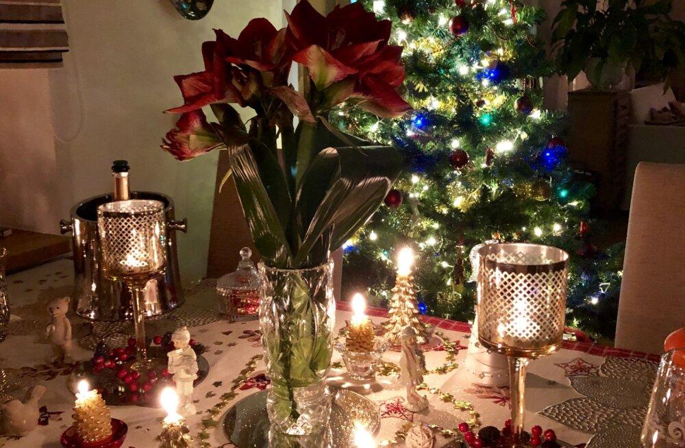 ФОТО: Искусствовед Эвелина Ведом показала JANA, как она украсила дом к Новому году и раскрыла 5 секретов праздничного уюта