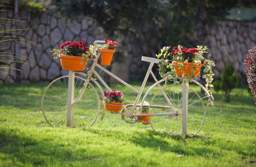 Suvine fotokonkurss: aita meil leida Eestimaa kõige ilusam jalgratas!