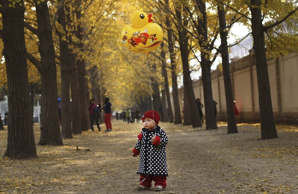 Üheaastane Pekingi elanik Qiqi võib nüüd saada endale õe või venna, kuid tema vanemad võivad seda pidada ka liiga kulukaks.