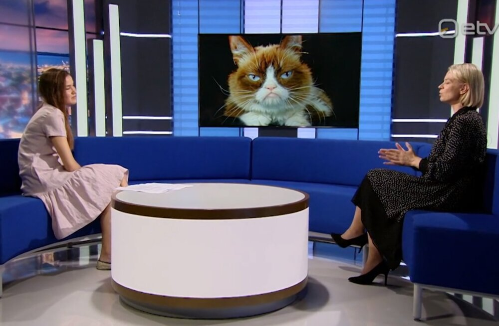 """Lemmikloom.ee käis """"Ringvaatel"""" külas ja tutvustas: just need on Eesti loomkuulsused"""