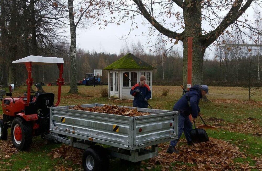 Maarja küla elanikud löövad kaasa lehtede koristamisel.