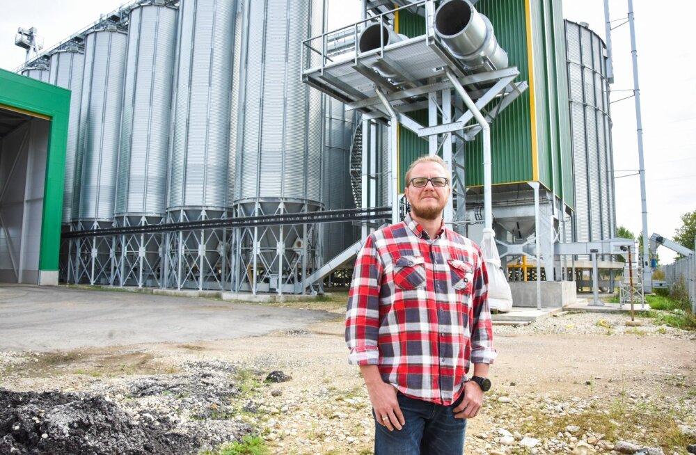 Imavere rapsitehas hakkab peagi täistuuridel vilja kuivatama ja ladustama, kinnitab OÜ Farm In Productions juhatuse liige Margo Kuusk.