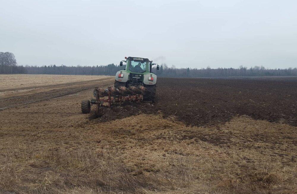 Aasta põllumehe päevik | Esimesed tööd ja sõnniku laotamine
