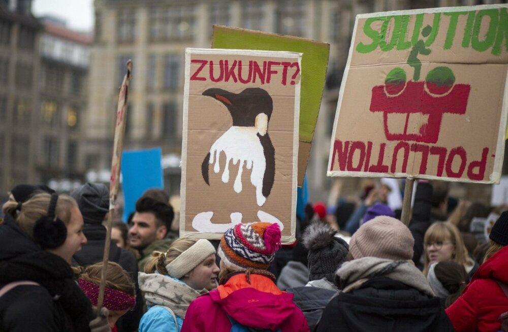 Saksamaa kaval on vastaseid mõlemast suunast. Rohelised ütlevad, et söetööstus tuleks sulgeda palju kiiremini. Teised ütlevad, et Saksa aatomi- ja söeelektri kadumine avab Poola ja Tšehhi aatomi- ja söeelektrile tee Saksa turule. Fotol on söevastaste meel