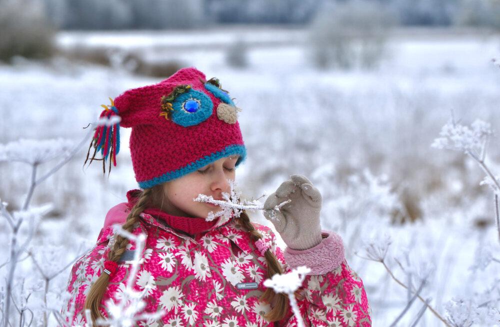 17. jaanuaril 80 aastat tagasi sündis Jõgeval Eesti külmarekord, –43,5 °C