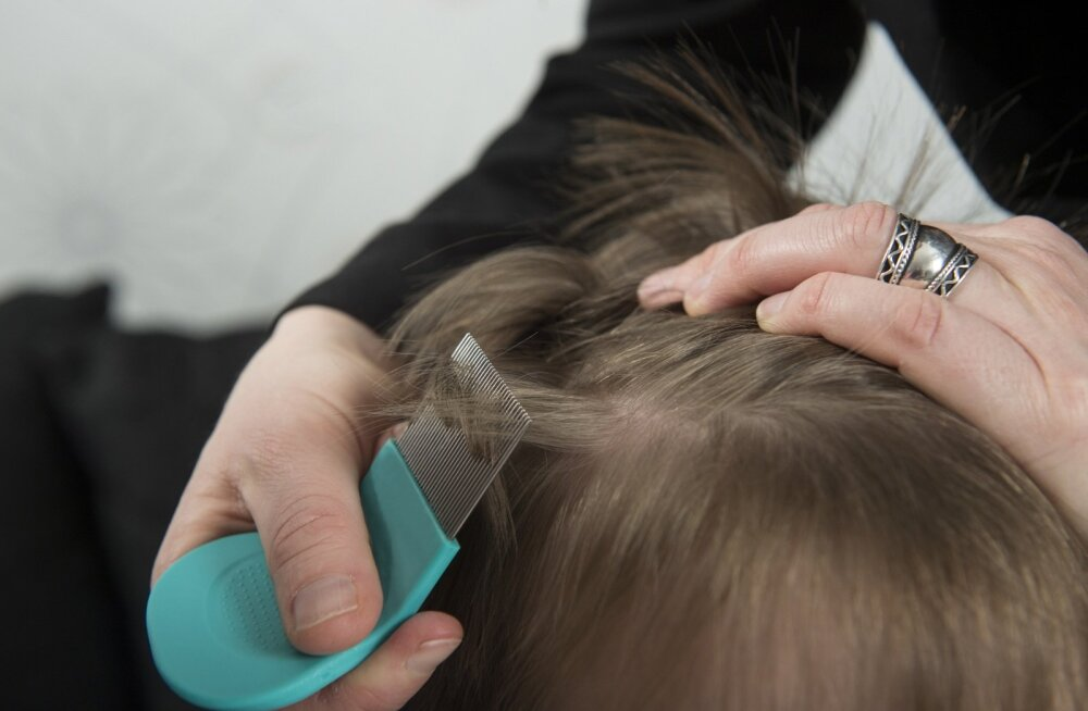Kammige laste juukseid, sest niiviisi paistavad täid paremini silma.