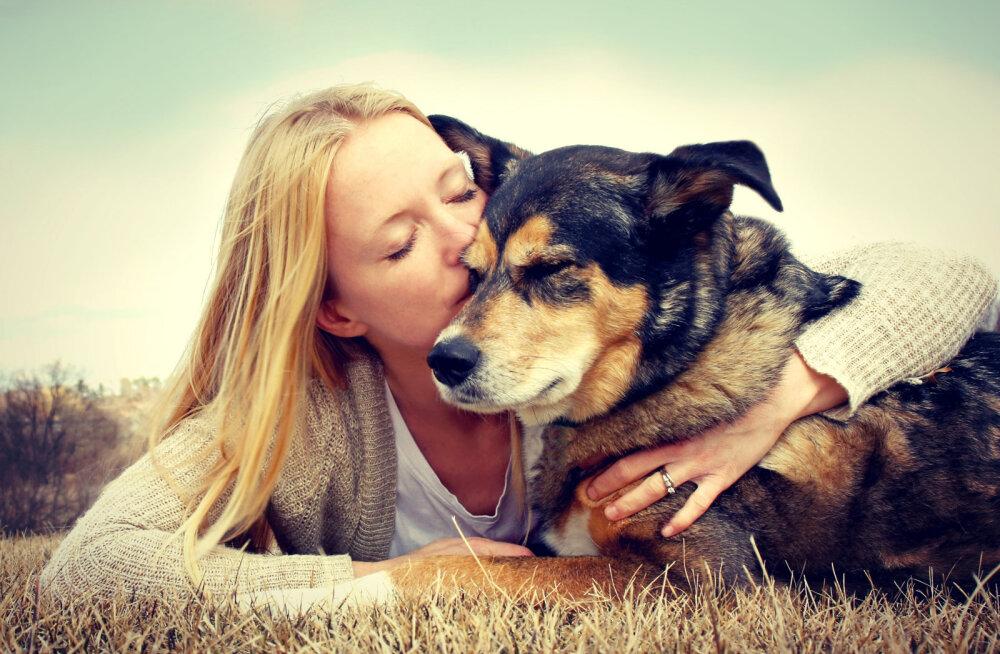 Pisarateni liigutav VIDEO: 13 asja, mida üks koera armastaja unustada ei tohiks