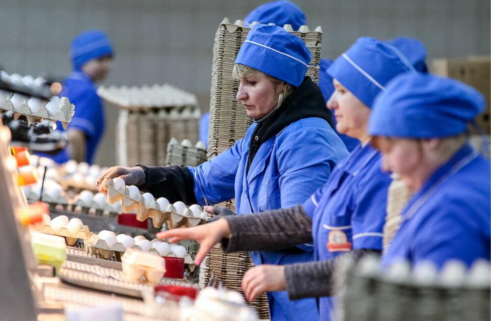 Ukraina toidutööstur jälgib töötajaid ning laseb paksud ja õnnetud lahti