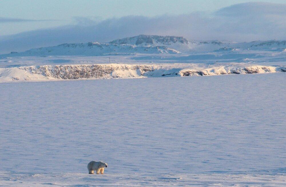Arktika sulamine paljastas viis uut saart, millest meil seni aimugi polnud