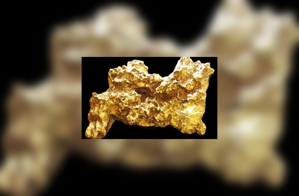 Welcome Stranger: Suurim looduslik kullakamakas, mis ealeski leitud