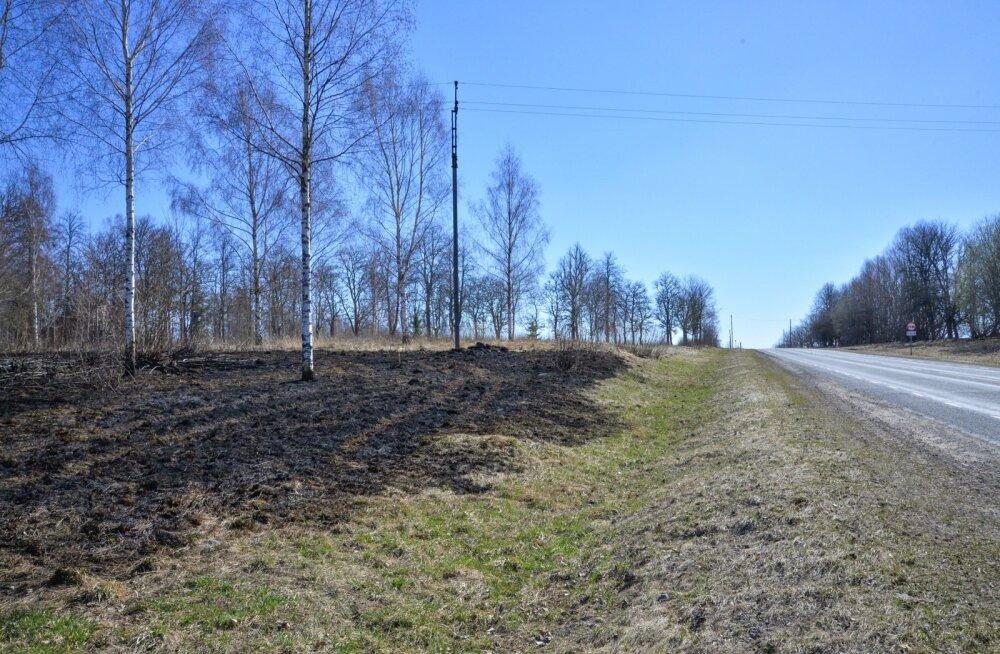 Tuletame meelde: kulu põletada ei tohi! Eriti mitte tuleohtlikul kevadel.