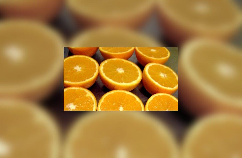 Retsept: Kasulik magustoit - mõrušokolaadikreem apelsinisalati ja granaatõunaga