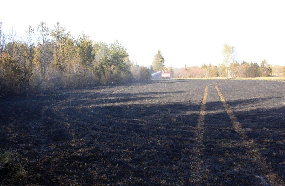 Päev liikluses: kolm õnntust Harju- ja üks Saaremaal, kaheksa vigastatut, vahele jäi kaks narko- ja kaheksa napsulembest juhti