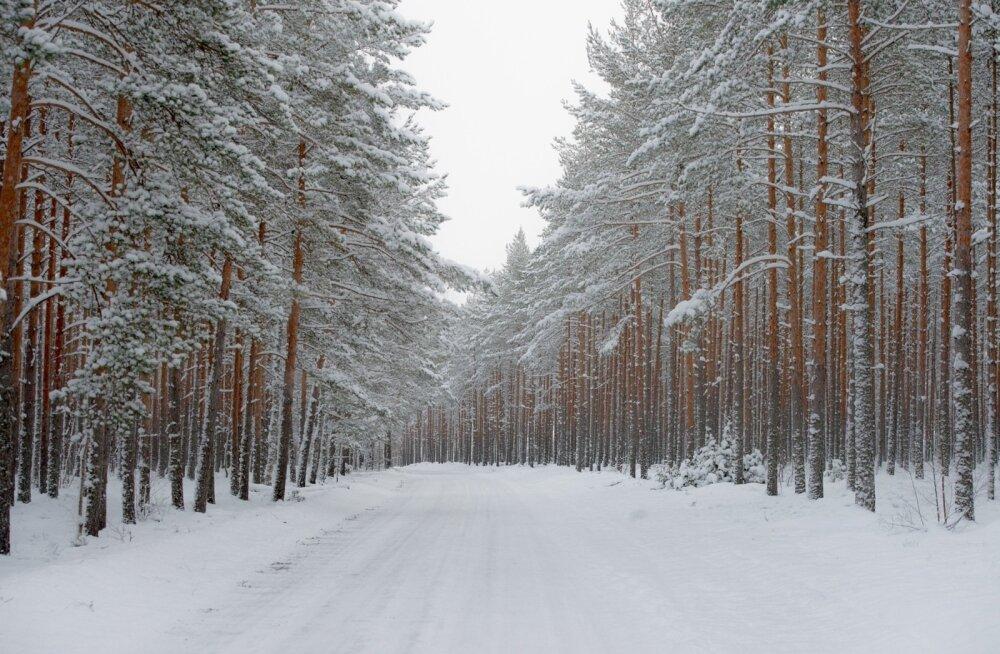 Talvised teeolud