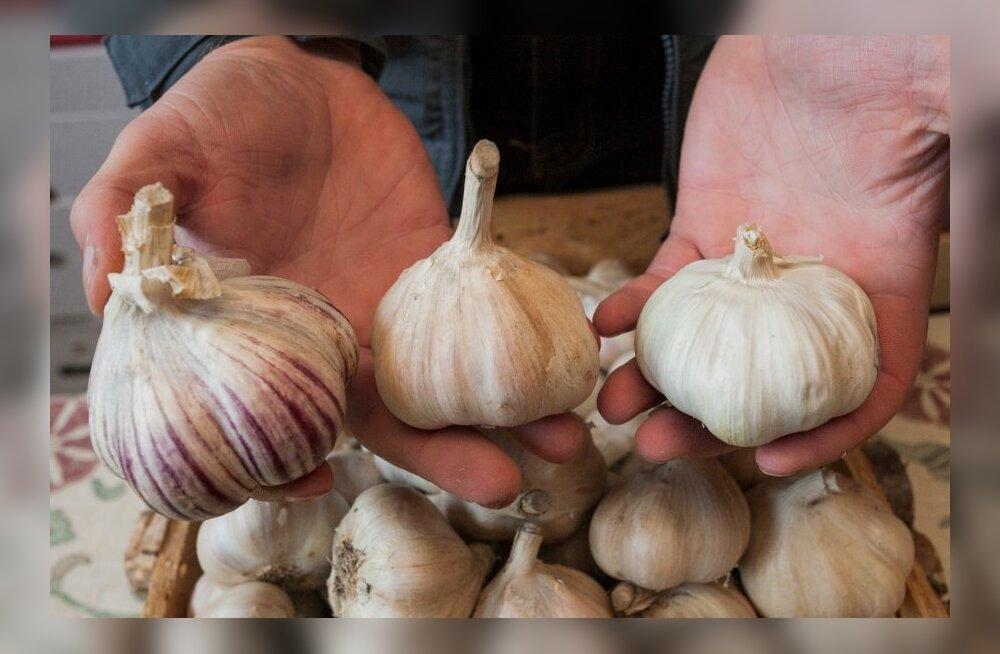 Põllumees avaldab arvamust: Mida eestlane sööb? Või täpsemalt – mida talle sisse söödetakse?