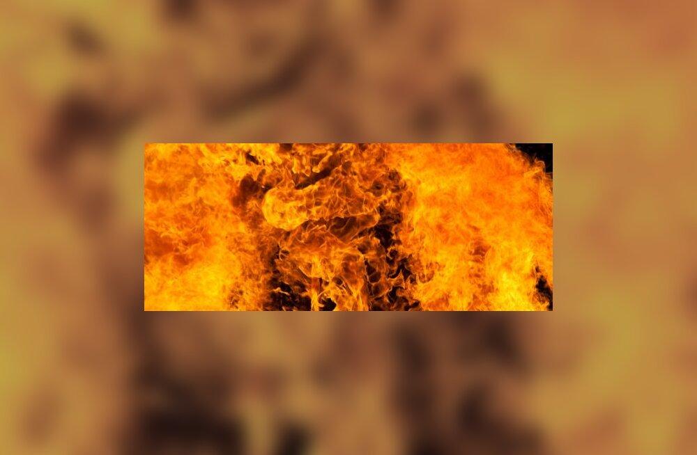 Soomes Kotkas hävis tulekahjus 18 autot