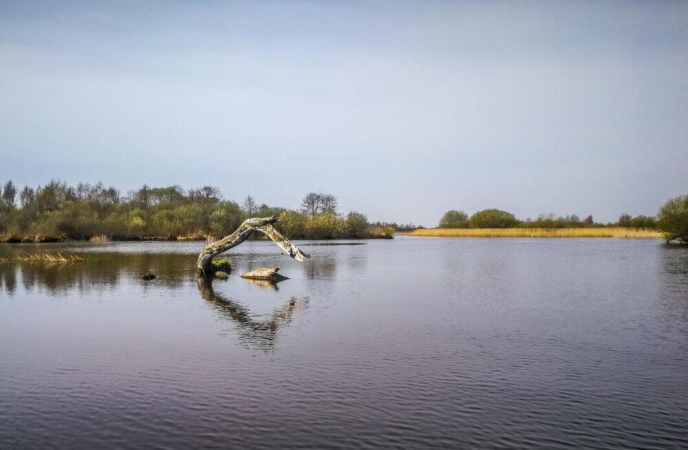 LOODUS KUTSUB | Emajõe-Suursoo ehk Peipsiveere looduskaitseala — imeline paik matkamiseks nii maad kui vett mööda