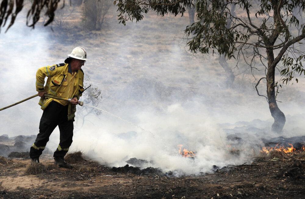 Tuul tõotab Austraalia põlengud taas lõkkele puhuda