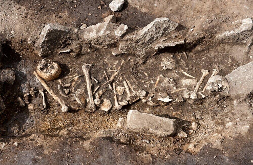 Väljakaevamised Maidlas