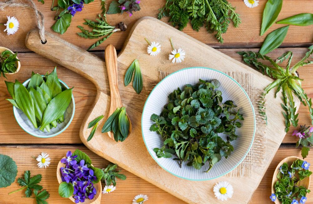"""5 väekat ja vitamiinirikast kevadist """"supertoitu"""", mis võiks olla igaühe söögilaual"""