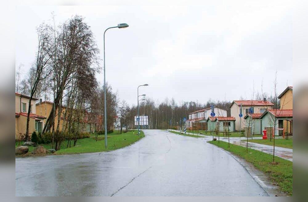 Kas Tallinna hall tagamaa või kaunis lõunavärav?