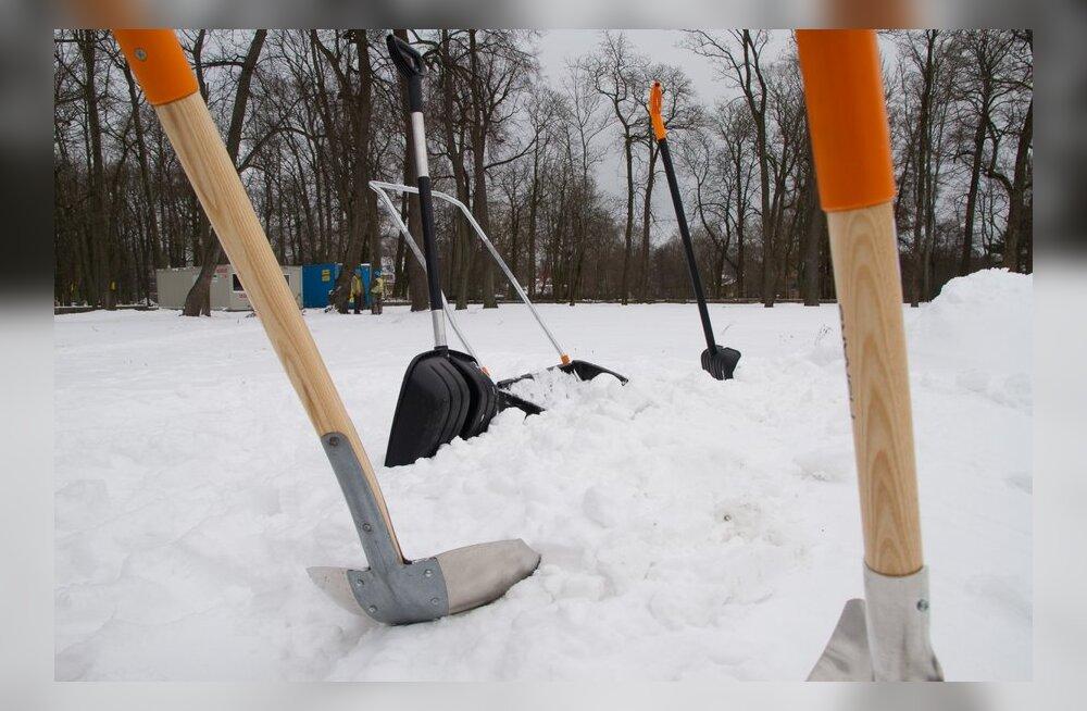 Читатель Delfi: центр Таллинна убирают от снега безобразно!